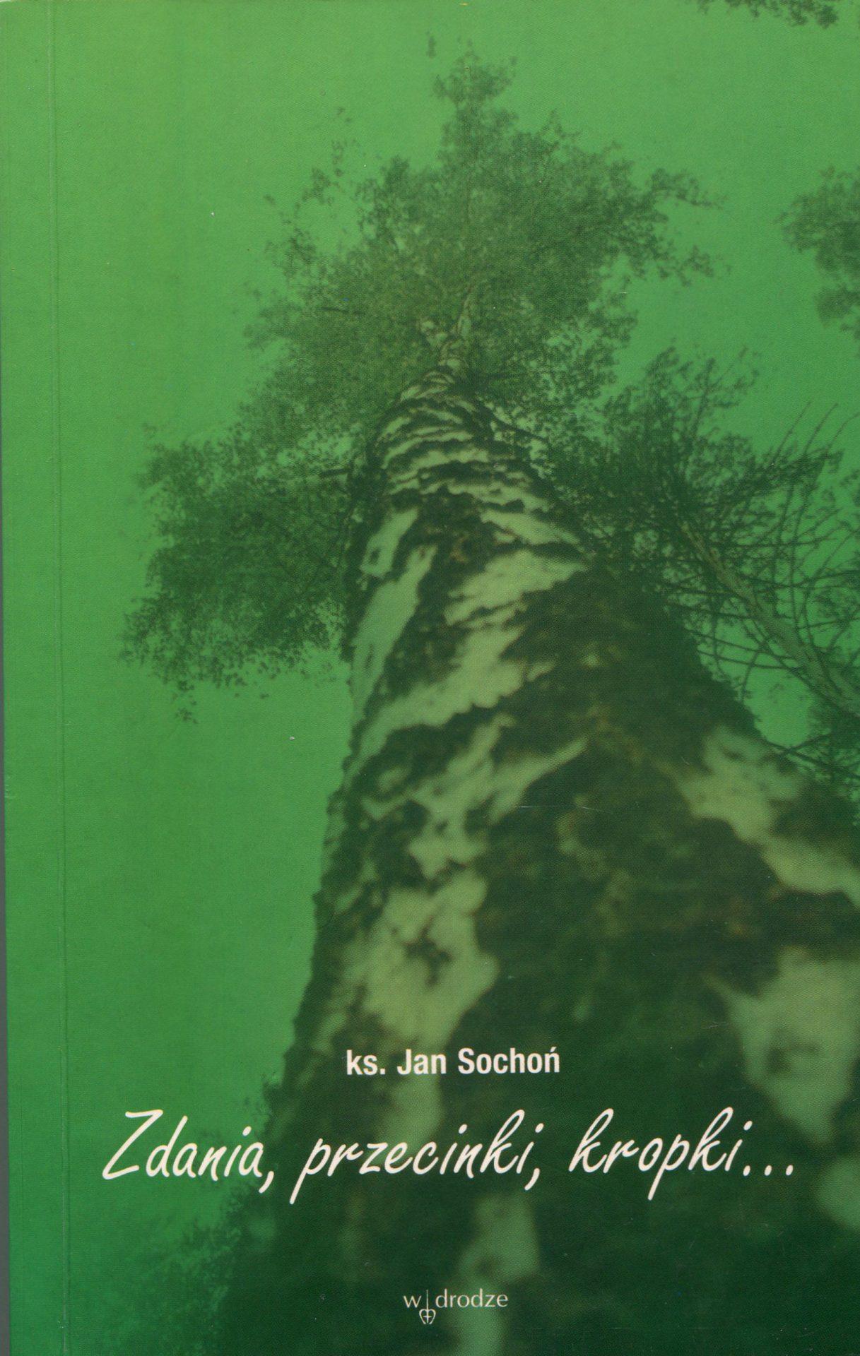 Zdania, przecinki, kropki - Jan Sochoń